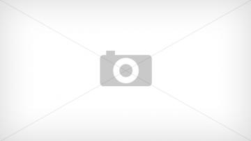 Игольчатый подшипник для гусеничный экскаватор HITACHI ZX450-3 (0788812)